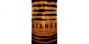 Antanea Pinot Noir logo