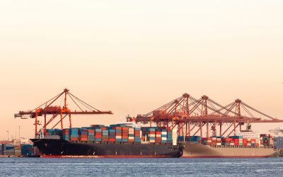 Shipping Disruption To Continue, Additional Capacity Being Added