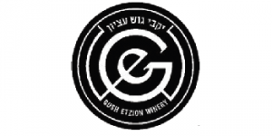 The River Gish Etzion logo