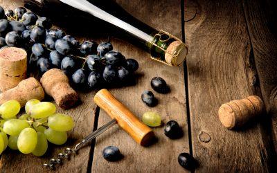 Chilean Wine Update