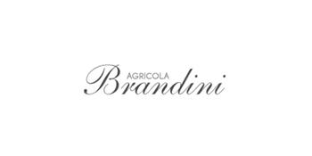brandini-wine-logo