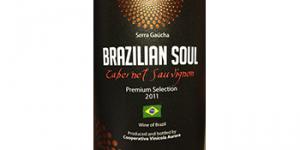 Brazilian Soul-Cabernet Sauvignon logo