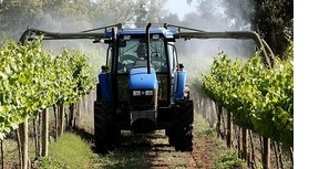 FT- Australian Wine_01-21-15