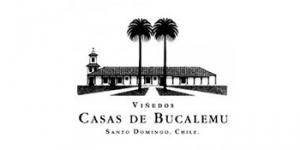Vnedos Casas de Bucalemu logo